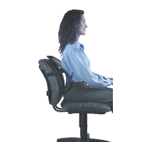 Fellowes Office Suites Black Mesh Back Support 8036501