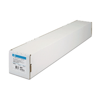 Image for HP Clear Film 610mm x 22m 101micron C3876A