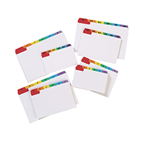 Image for Concord 5x3in MultiColour Guide Cards (24 Pack) 15198