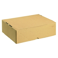 Image for Carton With Lid 305x215x100mm Brown (10 Pack) 144667114